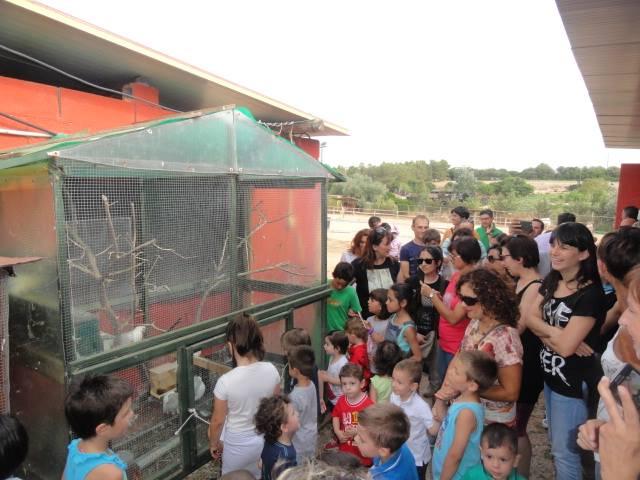 attività asilo nido sassari