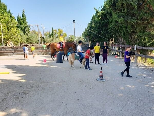 attività equestri bambini