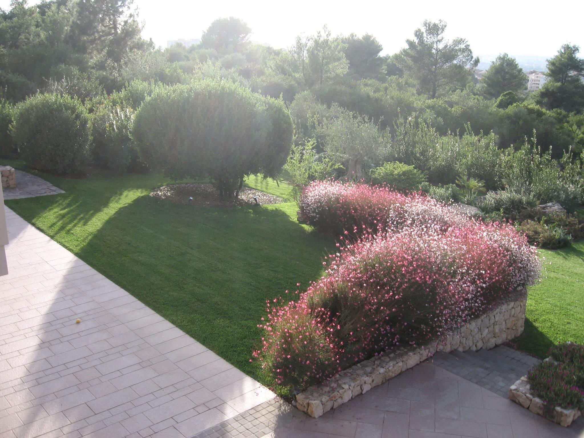 progettazione finale giardino sassari