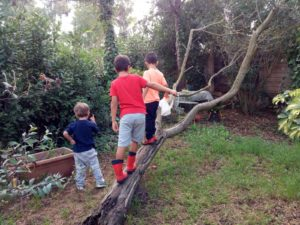 bambini e natura- ASALP